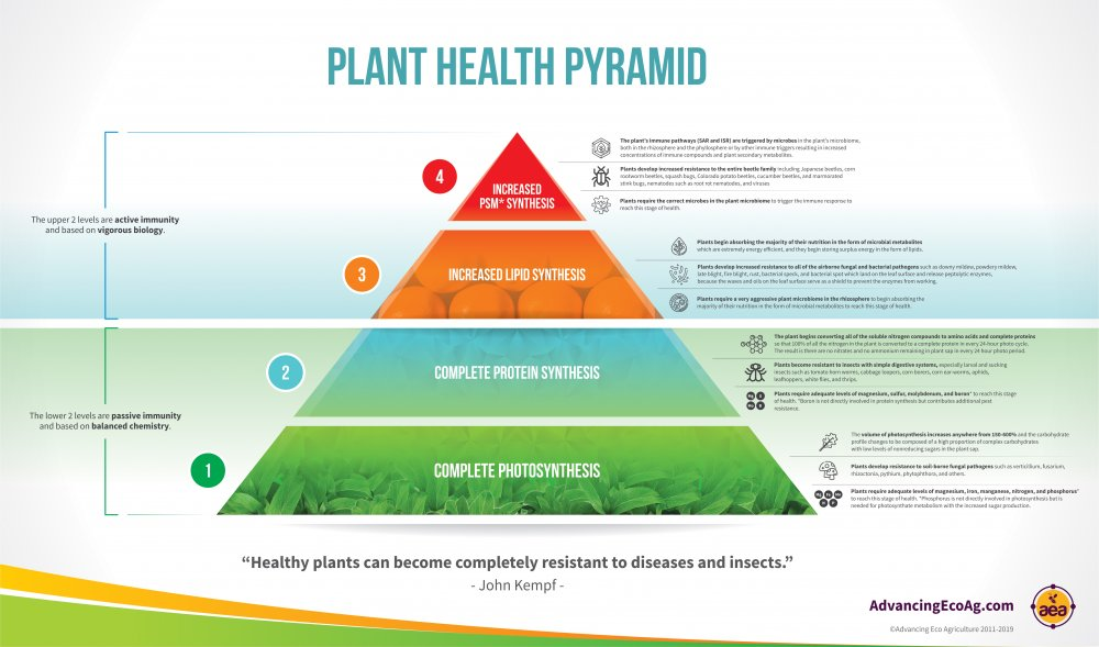 Plant Health Pyramid Complete Infographic.jpg