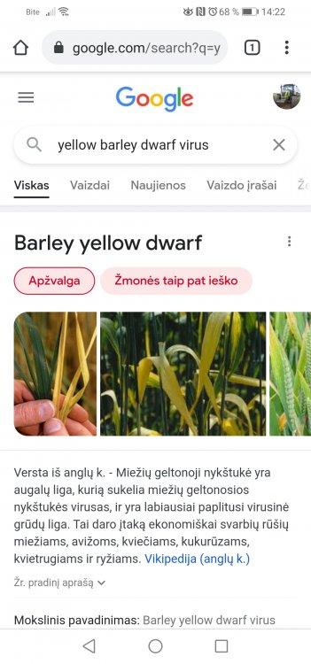 Screenshot_20210615_142218_com.android.chrome.jpg